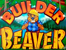 Builder Beaver от Rtg – это азартная игра с бонусными раундами